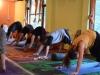 yoga-dharamshala10