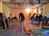 yoga-dharamshala49