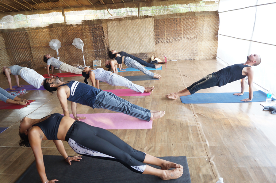 Ashtanga Yoga in YTT in dharamsala