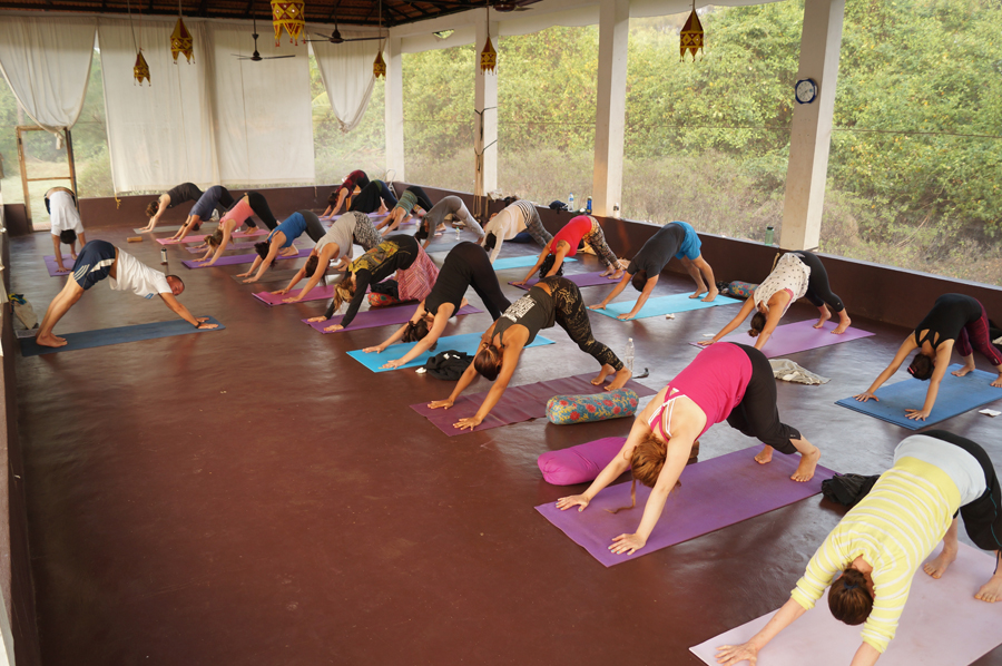 200 hours Yoga Teacher Training in Goa, India
