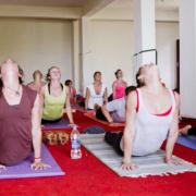 Anulom – Vilom Pranayama at Mahi Yoga