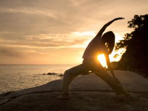 Yoga teacher training in India at Mahi Yoga Centre