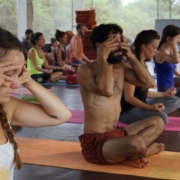 Yoga teacher training in Goa at Mahi Yoga Centre