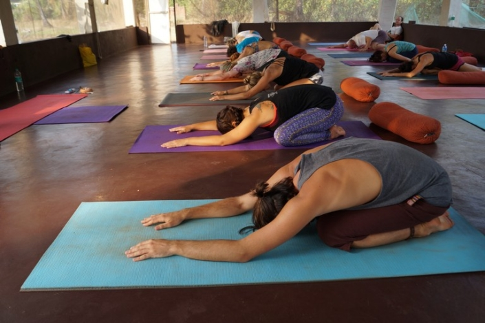 Ashtanga Vinyasa at Mahi Yoga india