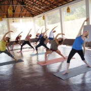 Yoga_Teacher_ Training_India