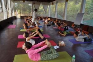 Yoga teacher training in Dharamsala at Mahi Yoga Centre