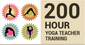 200 hours yoga teacher training certification at Mahi Yoga