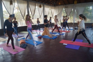Yoga Teacher Training in Rishikhesh at Mahi Yoga Centre